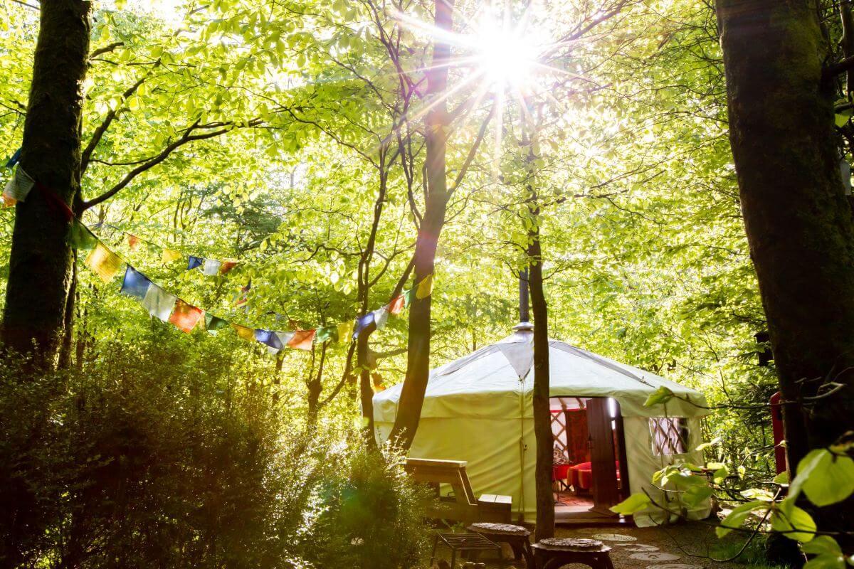 Mongolian Yurt at Larkhill