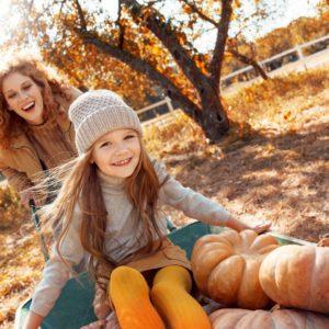 Child in wheelbarrow with pumpkins